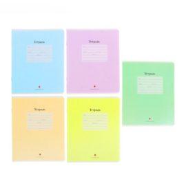 тетрадь 12 листов в крупную клетку цветная обложка