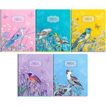 "Тетрадь 96л. А5, клетка ""Birds in flowers"""